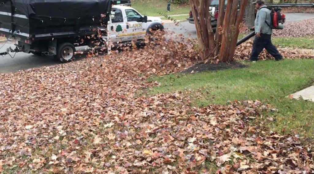 leaf blowing and yard maintenance | LawnArtists
